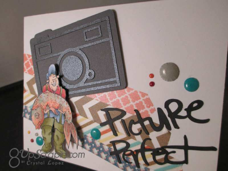Picture Perfect 003